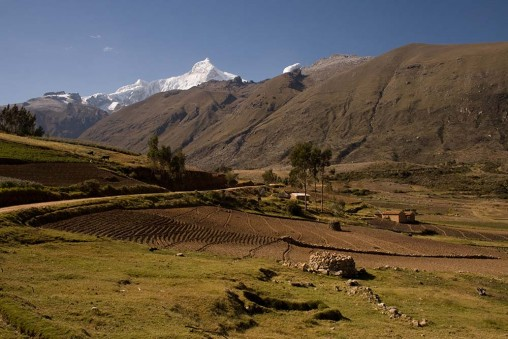 L'une des nombreuses terres en culture, à plus de 3500m!