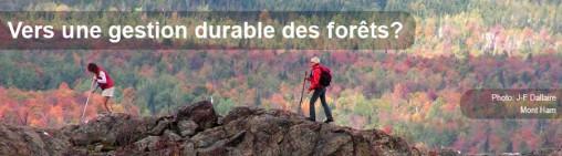 Vers une gestion durable des forêts - Entete 7