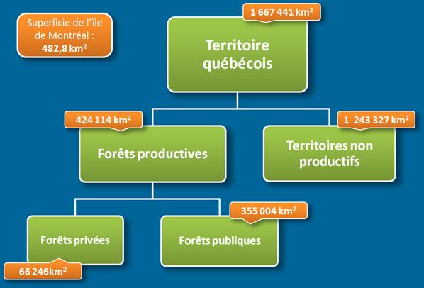 Superficie du territoire forestier
