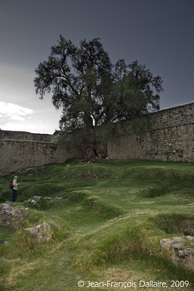 Ces vestiges étaient au départ une source d'eau potable. Par la suite, un site pour les rites spirituels fut édifié.