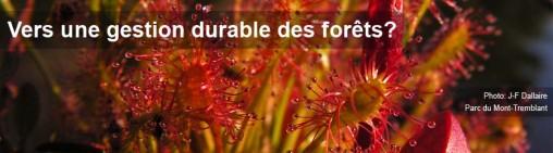 Vers une gestion durable des forêts - Entete 11