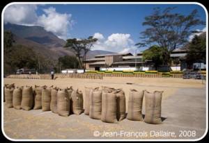 Coopérative de café de Quillabamba