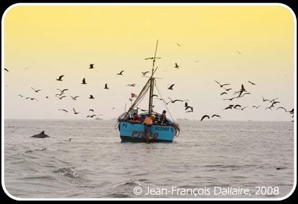 Pêcheur près de la ville de Pisco