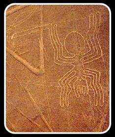 Glyphe de l'araignée